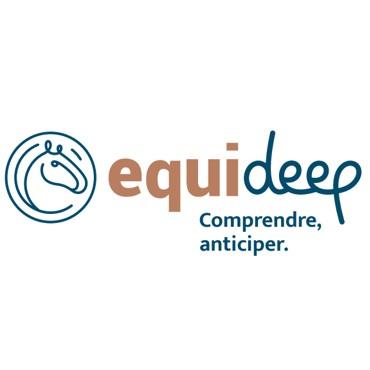 Nouveaux Projets : EquiDeep &Vidéo